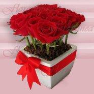 Arreglo de Rosas de Florerias en el DF