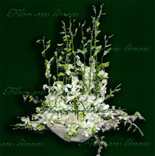 Florerias En El Df Catalogo De Arreglos Florales
