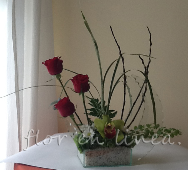 Cascada de Rosas de Florerias en el DF