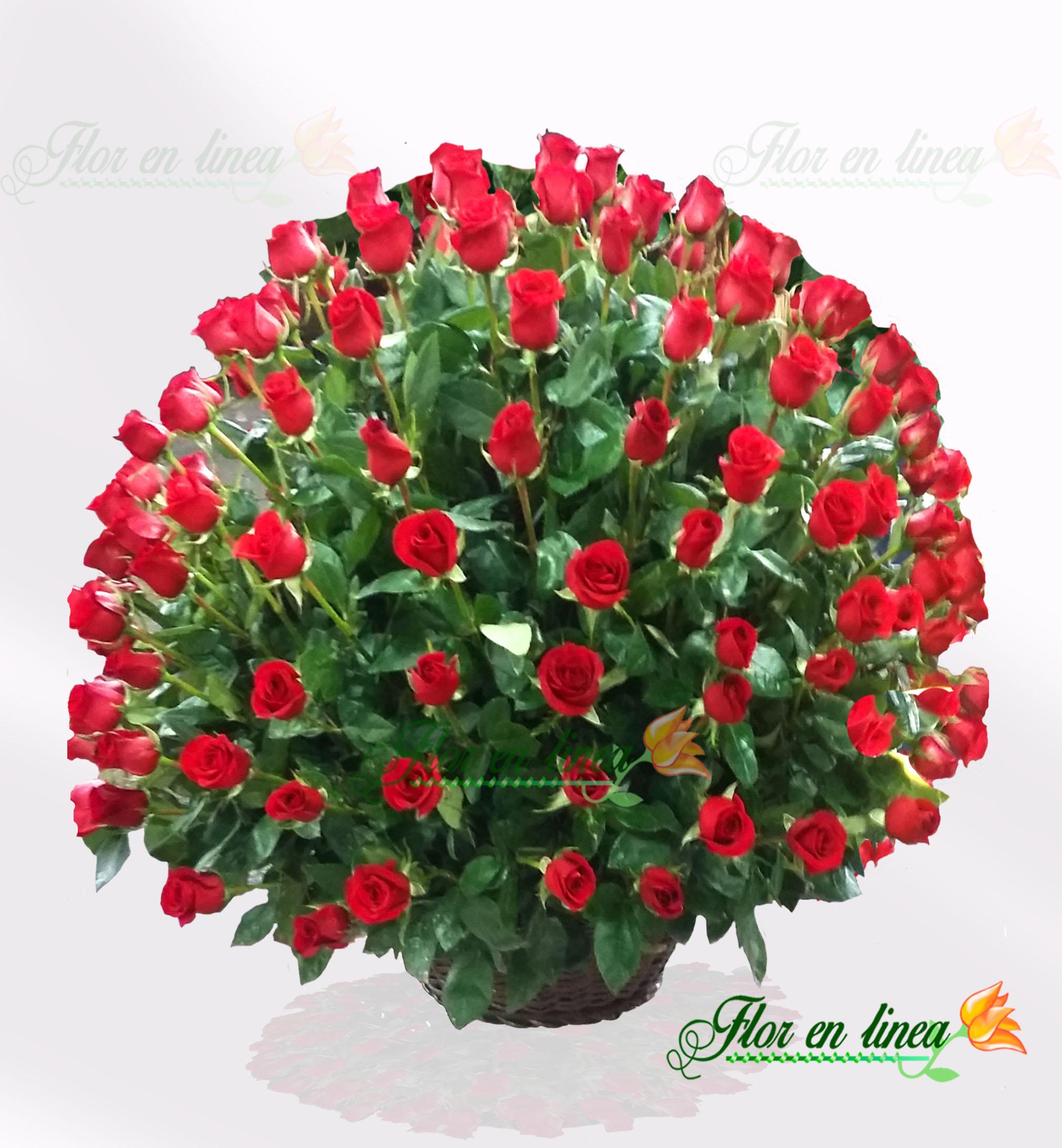 Canasta de Rosas Vip 01