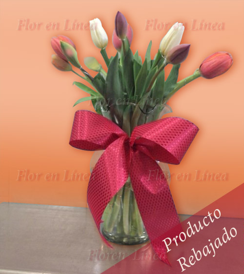 Cl�sico de Tulipanes 02