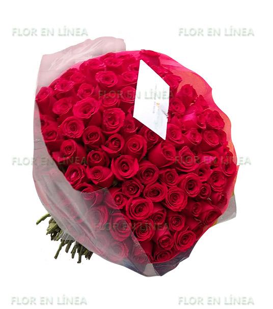 Amor de Rosas 04